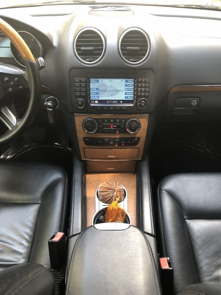 Mercedes-Benz GL 450 Xe Mercedes Benz GL GL 450 4Matic 2008